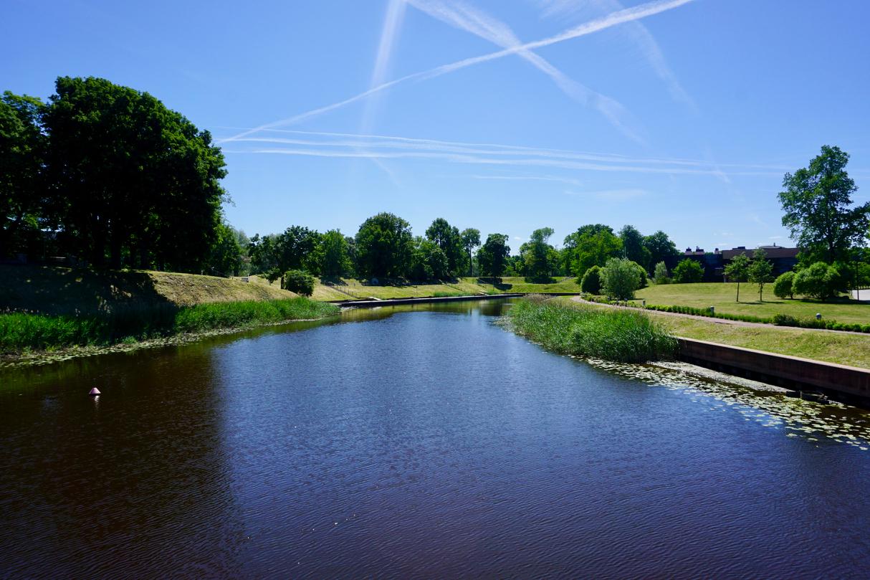 Grüner Park in Estland im Mai