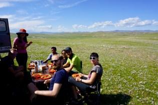 Mittagspause auf der grünen Wiese