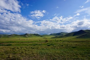 Panorama in der Nordmongolei