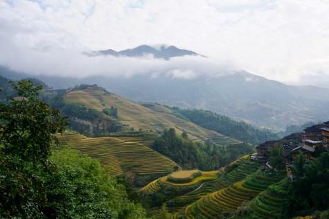 Ausblick über Reisterrassen