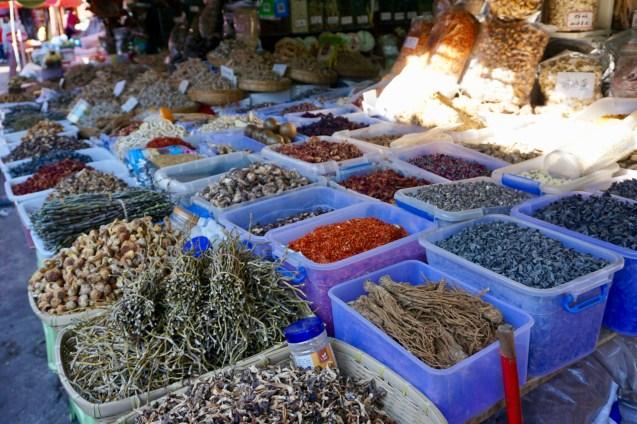 Pilze aus Yunnan