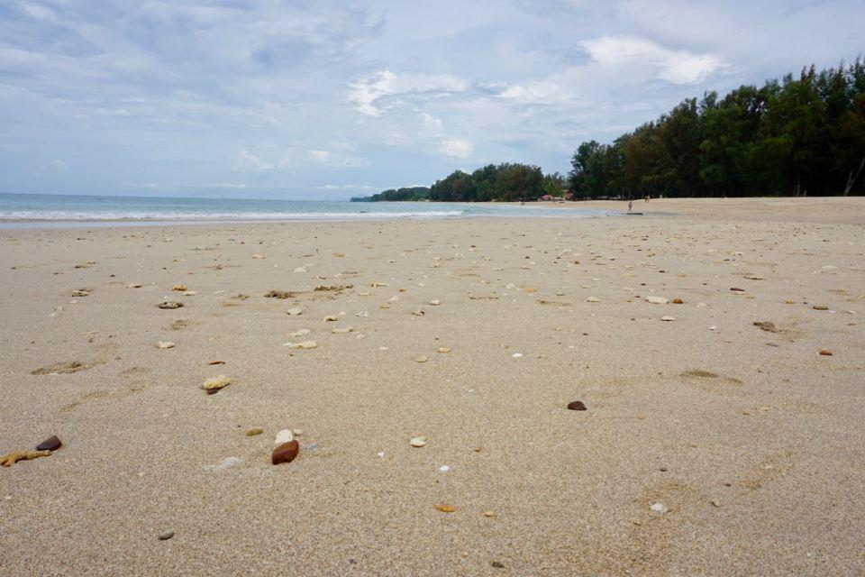 Stein und Muscheln am Strand