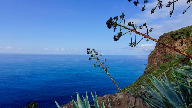 Madeira Steilküste