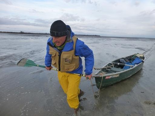 2014-04-26_usa_alaska_cordova_mc-kinley-peak_dario-kayak.JPG