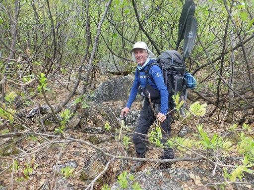 2014-05-26_usa_alaska_denali_sea2top2sea_dario-dense-forest.JPG