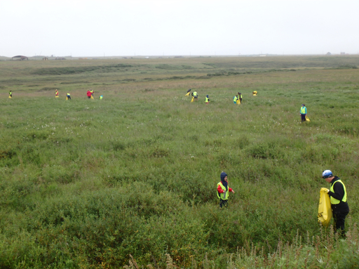 2016-07-28_usa-alaska-nome_clean-up-snow-dump-all volunteers.jpg