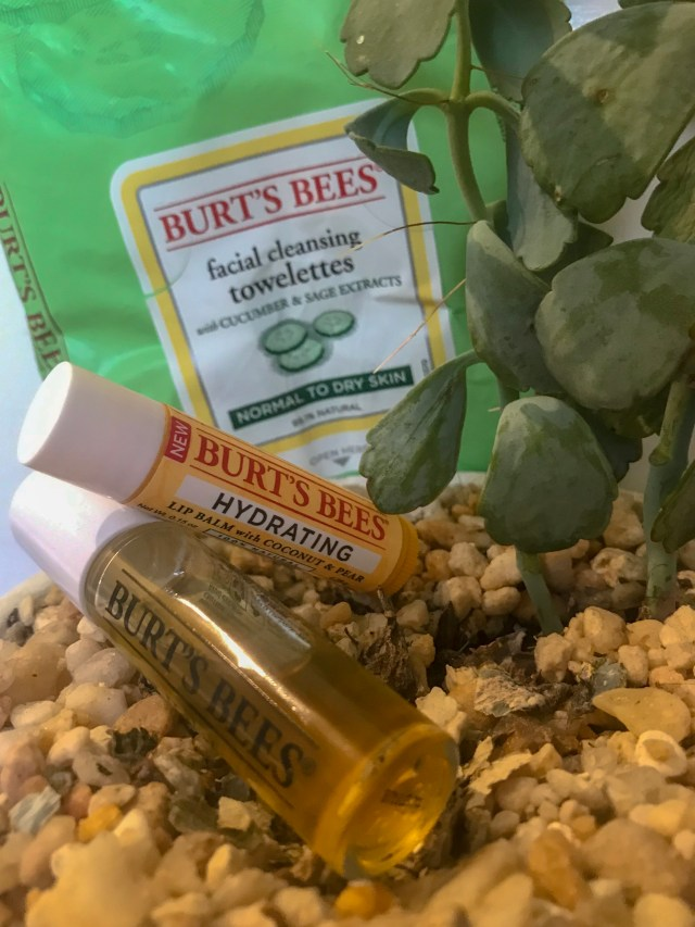 Photo of three Burt's Bees products on pebbles.