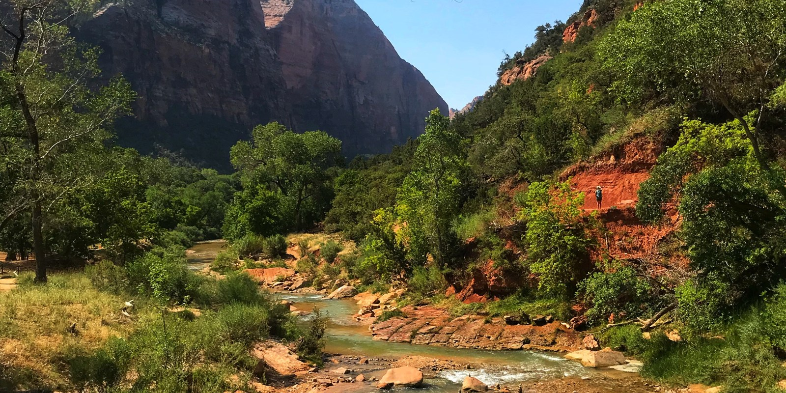 THE VIRIGN RIVER AT ZION NATIONAL PARK