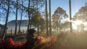 Camping Ranca Upas