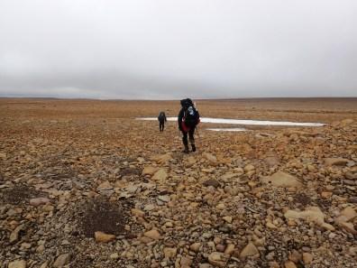 Wiatr miota nami na skalnym pustkowiu.