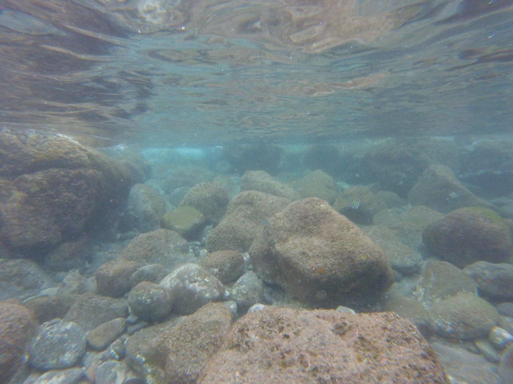 snorkeling guadeloupe malendure