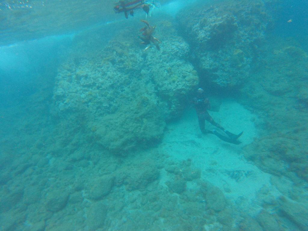 plongeur pêchant des poissons