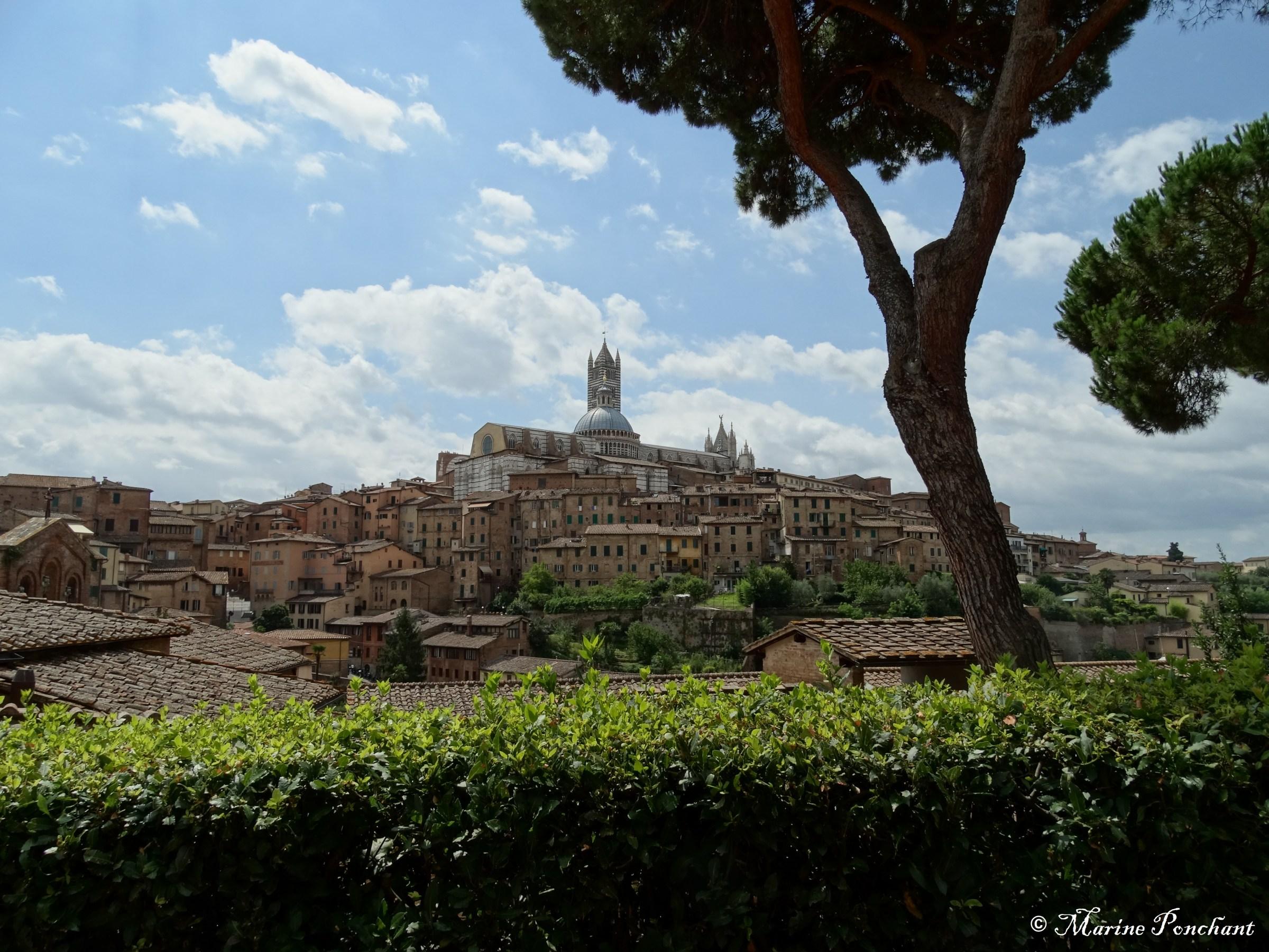 Sienne en hauteur, Toscane - Italie