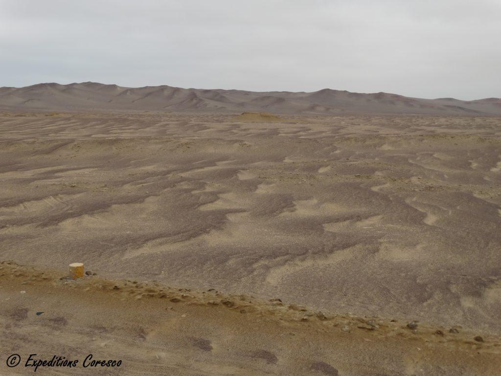 Désert de sable Paracas