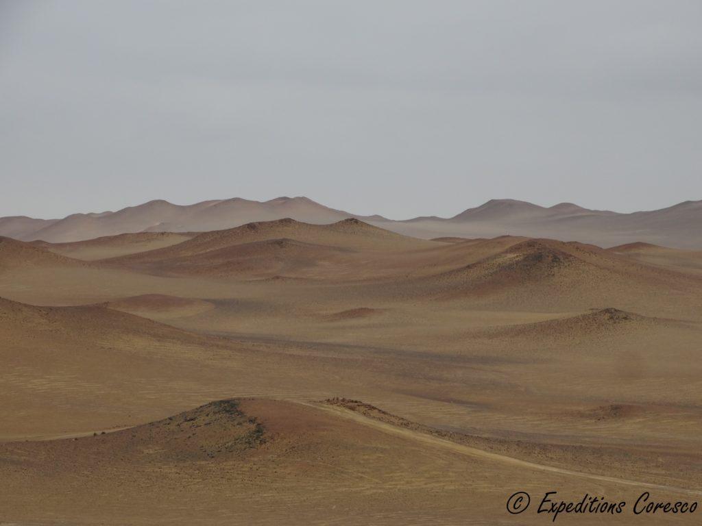 Désert dans la réserve de Paracas