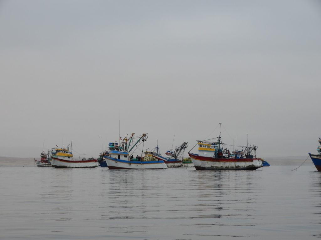Petit port de Paracas
