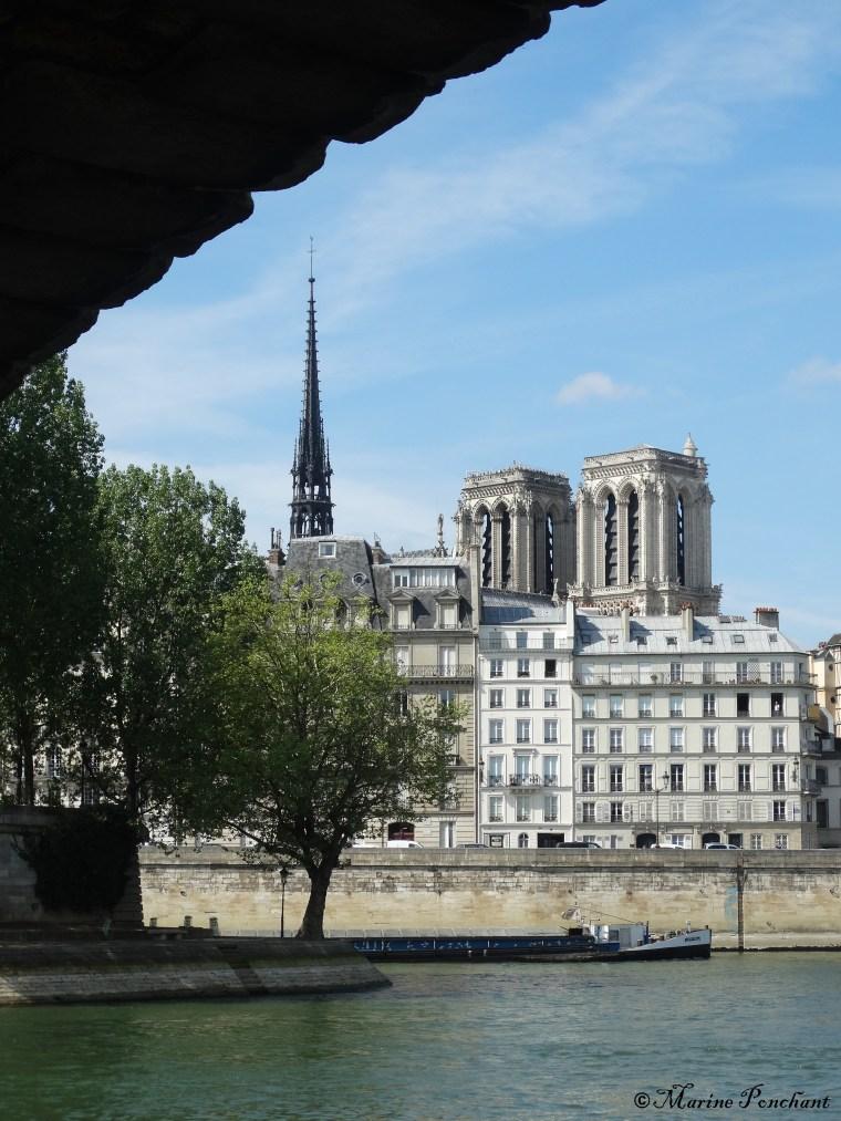 Clocher et tours de la cathédrale parisienne