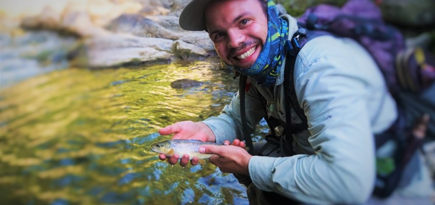 Brown Trout from the Canton of Vaud