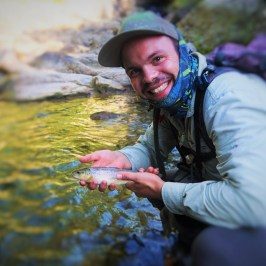 Brown Trout caught while fly fishing in the Canton of Vaud