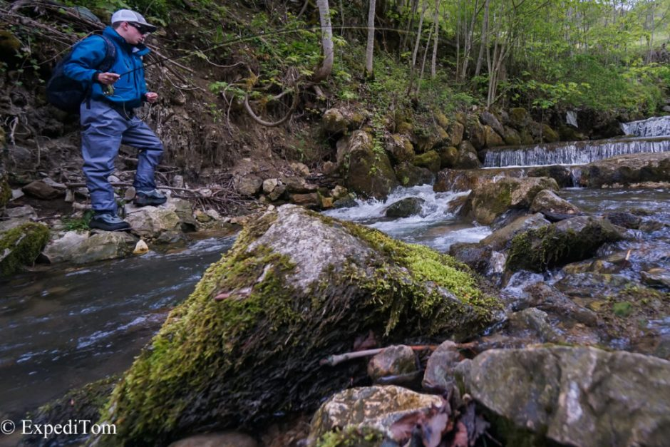 Fly fishing a Jura mountain creek in Switzerland with Robin Melliger
