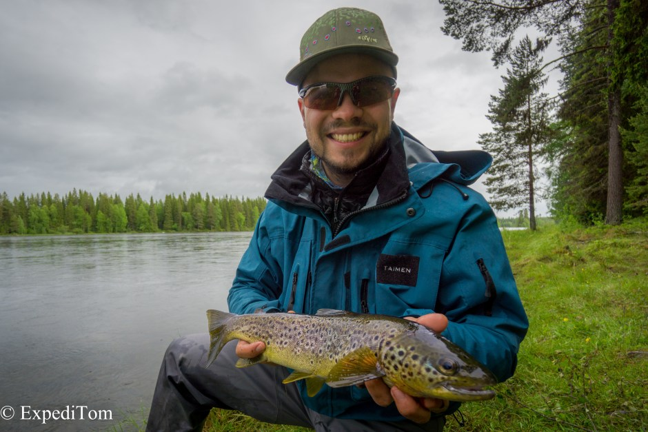 The stunning brown trout caught in the Hårkan river while fly fishing in Jämtland