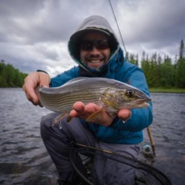 Fly Fishing Jämtland (Part 3): Fjäll around Åre