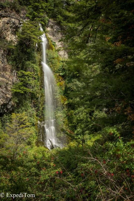 Jungle Falls Patagonia