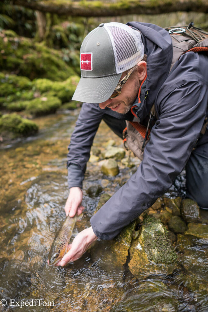 Large trout for this tiny creek