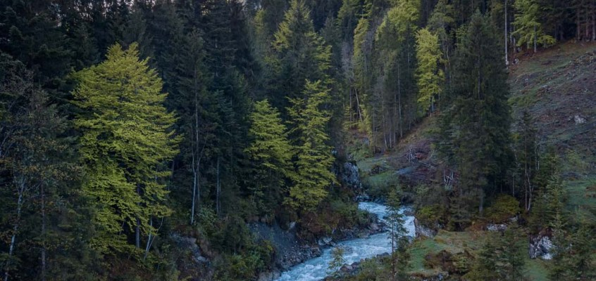 Why Fly Fishing in Switzerland is special