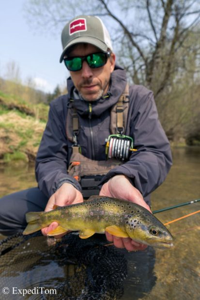 Wonderful Swiss Tiger Trout caught in the Jura mountains