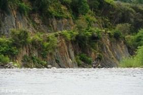 Amazing scenery North Island NZ