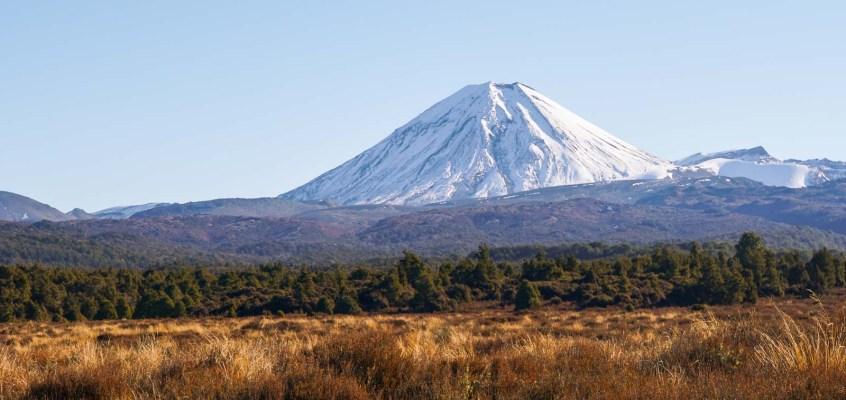 New Zealand Diary: Driving Down Memory Lane