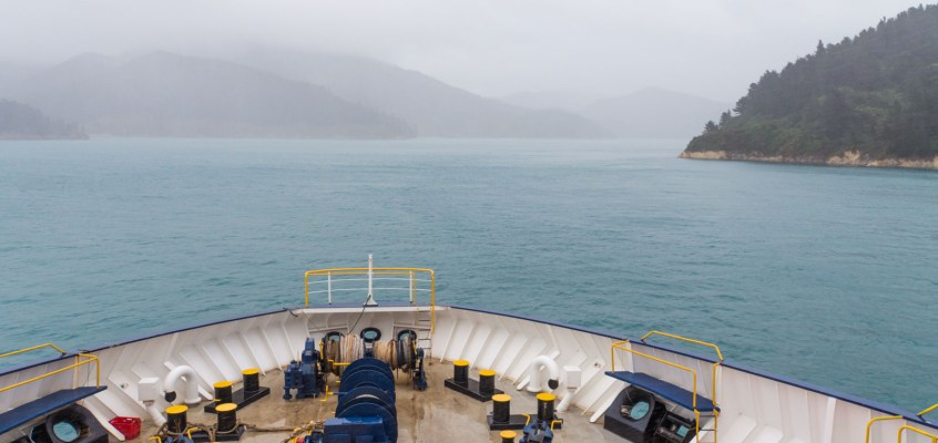 New Zealand Diary: Issues ahead