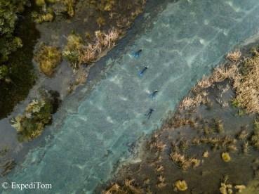 Drift Dive Fish&Game Rotorua