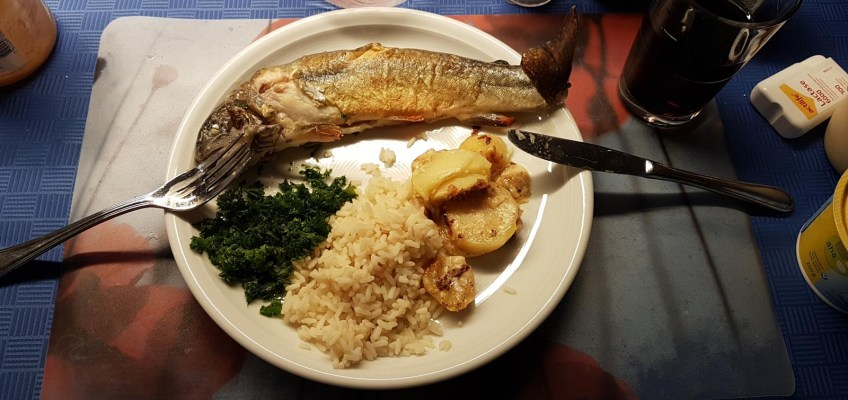Brook Trout for dinner