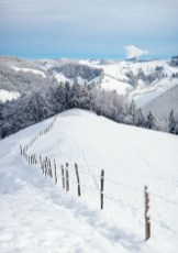 Sugar-coated Jura mountains