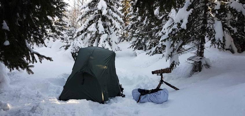 Alone in the Snow II – Hide and Seek