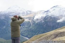 ExpediTom Swiss National Park Wildlife 032