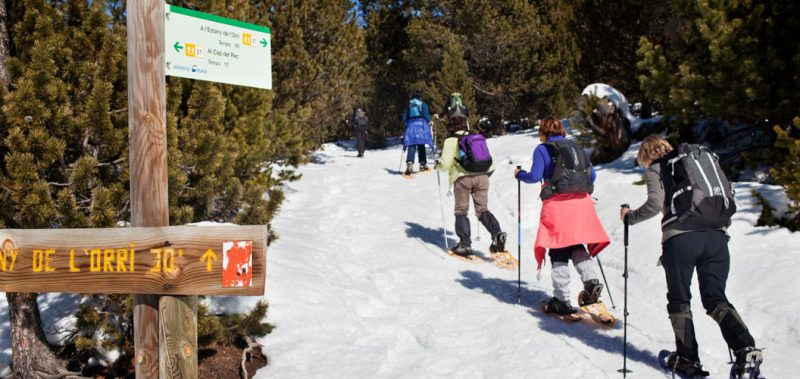 excursion raquetas de nieve