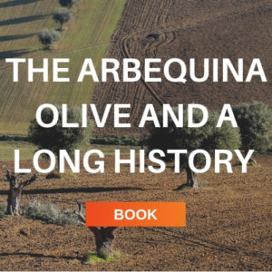 the arbequina olive end a long history