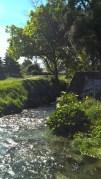 Taylor River walkway, Blenheim