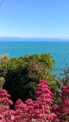 View from Nelson over Tasman Bay