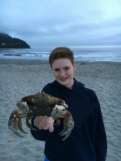 Seen and unseen on our family vacation: crabs on the beach! They just washed ashore.
