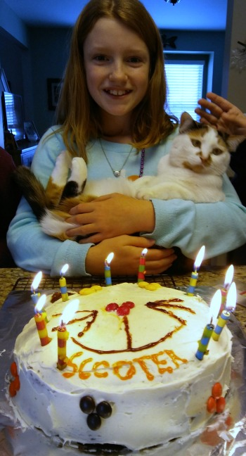 How to throw a cat-tastic birhday party: make a cat cake!