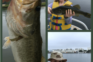 This review of fishing at Disney World covers all the details you need to know when you're ready to catch tons of large mouth bass at the happiest place on earth.