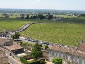 Bike routes through the vineyards