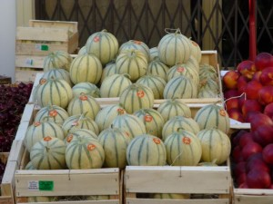 Sweet Cavaillon melons