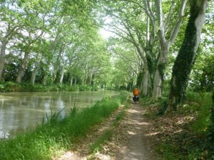 Double deeply rutted paths with gorgeous Canal views