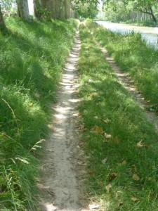 Narrowing and degraded Canal path between Le Somail and Capestang