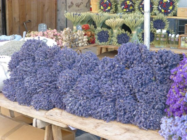 Along the road, in the markets, lavender is everywhere in the Vaucluse